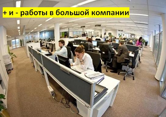 + и - работы в большой компании