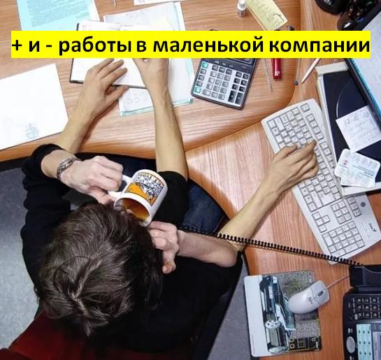 + и - работы в маленькой компании